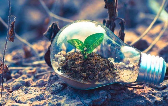 12 meses sostenibles